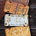 Rusted Plates by Diane Greco-Lesser
