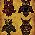 Rustic Aged 4 Owls by Kyle Wood