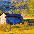 Rustic Autumn Landscape In North Georgia by Mark E Tisdale