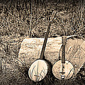 Rustic Banjos by Bill Cannon