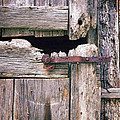 Rustic Barn Door by Jill Battaglia