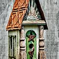 Rustic Birdhouse by Christopher Holmes