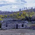 Rustic Cabin by Carolyn Fox