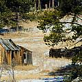 Rustic Cabin In The Pines by Dakota Light Photography By Dakota