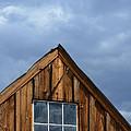 Rustic Cabin Window by Jill Battaglia