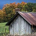 Rustic Farm Shed by John Greim
