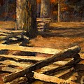Rustic Fence by Roger Lundskow