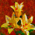 Rustic Lilies 2 by P Donovan