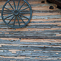 Rustic Ornamentation - Yates Mill Pond by Paulette B Wright