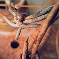 Rustic Rust by  Jeff Mantz Rhodes
