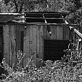 Rustic Shed 2 by Richard J Cassato