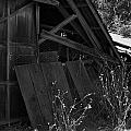 Rustic Shed 4 by Richard J Cassato