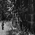 Rustic Shed 5 by Richard J Cassato