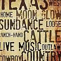 Rustic Texas Art by Chastity Hoff