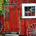 Rustic Window Pane by Guy Harnett