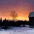 Rustic Winter Sunrise by Cheryl Baxter