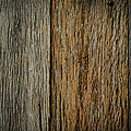 Rustic Wood Background by Brandon Bourdages
