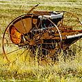 Rusting Farm Equipment by Jeff Swan