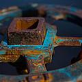 Rusty 1 by Karol Livote