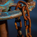 Rusty 2 by Karol Livote