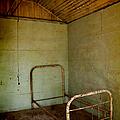 Rusty Bed by Margie Hurwich