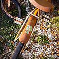 Rusty Bike Bumper by Sonja Quintero