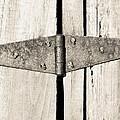 Rusty Hinge 2 by Nick Kirby