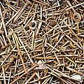 Rusty Nails by Michal Boubin