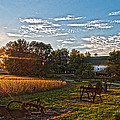 Rusty Old Farm Equipment by Randall Branham