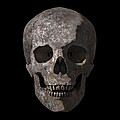 Rusty Old Skull by Vitaliy Gladkiy
