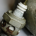 Rusty Old Spark Plug  5  by Wilma  Birdwell
