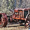 Rusty Old Tractor by Brenda  Spittle