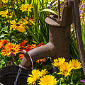 Rusty Old Water Pump by Garry Gay