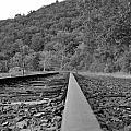 Rusty Rail by Kurt Von Dietsch