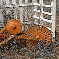 Rusty Relic by PMG Images