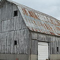 Rusty Roof Barn by Minnie Davis