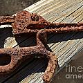 Rusty Tools II by Debbie Portwood