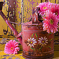 Rusty Watering Can by Garry Gay