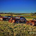 Rusty Westward Line Up by Reid Callaway