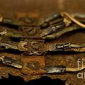 Rusty Wires by Wilma  Birdwell