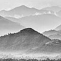 Rwanda Hills by Max Waugh