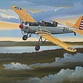 Ryan Pt-22 Recruit by Stuart Swartz