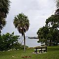 Ryckman Park In Melbourne Beach Florida by Allan  Hughes