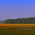 Rye Salt Marsh Pano by Jeff Sinon