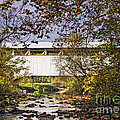 Ryot Covered Bridge And Stream by Timothy Flanigan