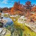 Sabinal River Magic Utopia Texas Hill Country by Silvio Ligutti