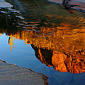 Sabino Canyon Reflection by Reed Rahn