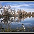 Sacramento Wildlife Refuge Pond With Blue Heron by Karma Ganzler