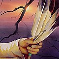 Sacred Feathers by Robert Hooper