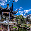 Sacred Garden by Johnny Lam